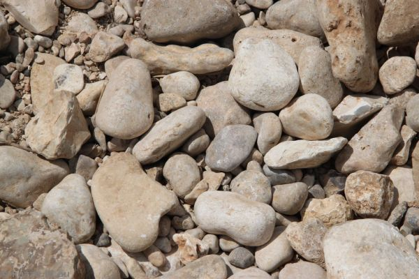 Stones in the creek bed