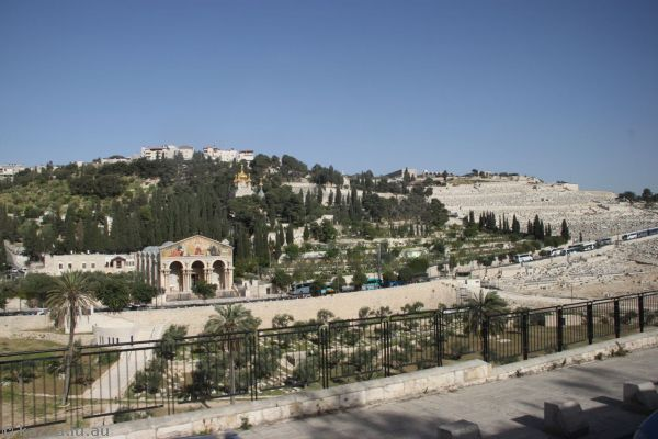 Mount of Olives from the east side of the Temple Mount