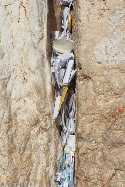 Prayers in the Wailing Wall<br>Photo by Dad