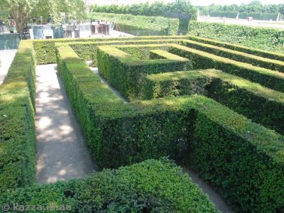 Maze in the palace gardens