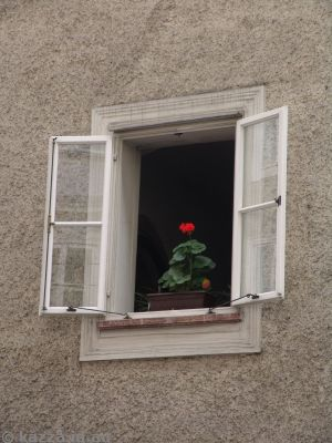 I thought this single geranium in a window was kinda cool
