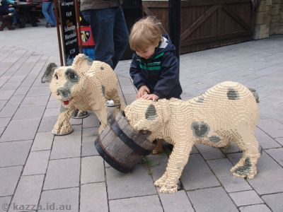 Kid with pigs