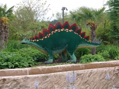 A stegosaurus