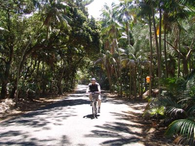 You cycle everywhere on Lord Howe Island