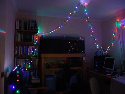 Study lights