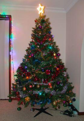 Christmas tree, 2009