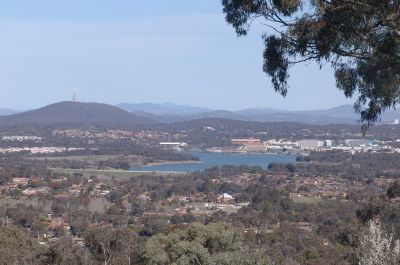 View from Mt Rogers
