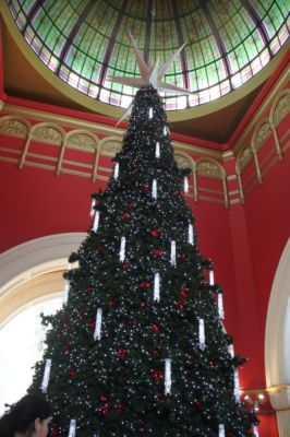 Christmas tree in the QVB