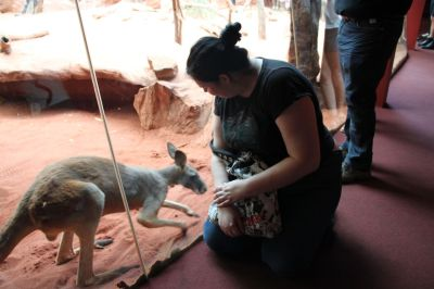 Kore and a kangaroo