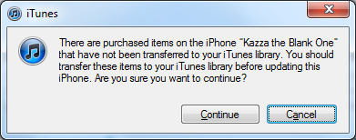 There are purchased items on the iphone when updating