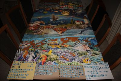 Life jigsaw progress