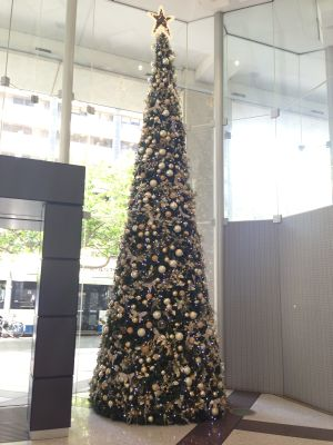 Market St Christmas Tree