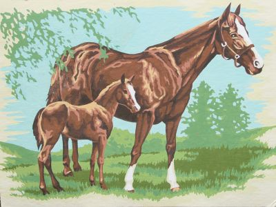 Paint by numbers thoroughbreds