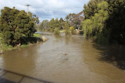 Ginninderra Creek flood