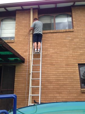 David up a ladder