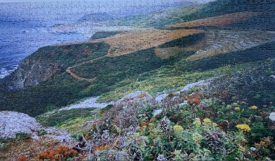 California coast jigsaw