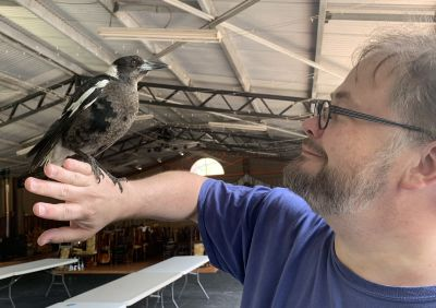Stu and the magpie