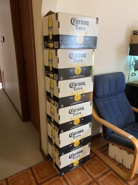 Cases of Corona