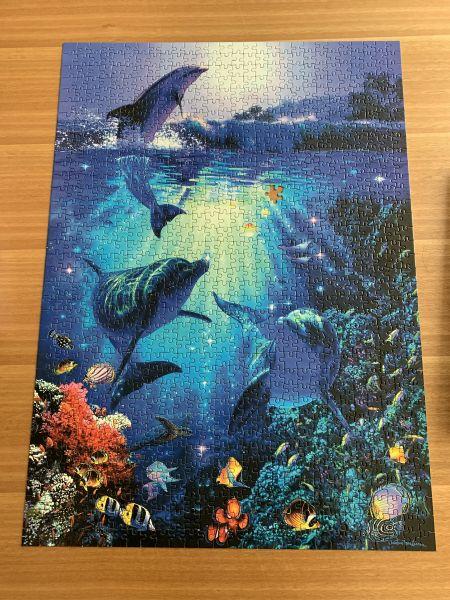 Dolphins jigsaw