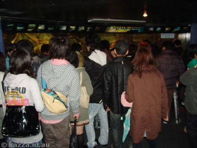 Crowds at the aquarium - made seeing things very hard