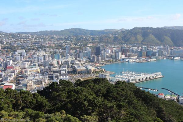 View of Wellington from Mount Victoria