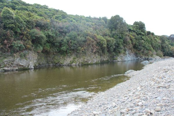 Hutt River - where scenes for the River Anduin were shot