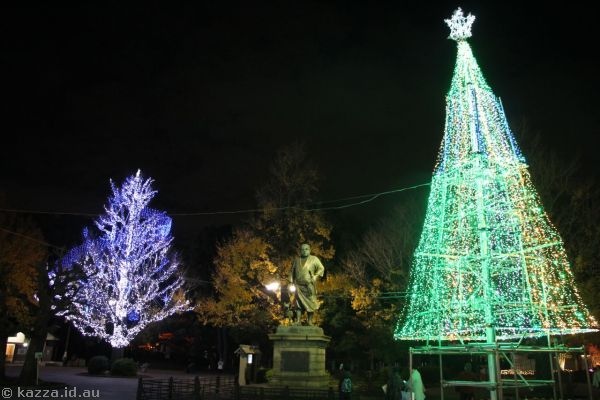 Trees in Ueno Park lit up with Christmas lights