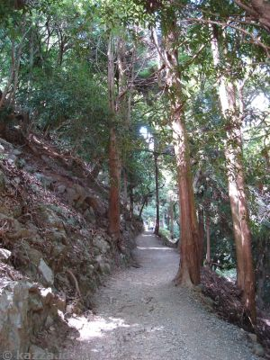 Walking up Iwatayama