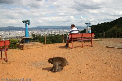 Looking across to Kyoto