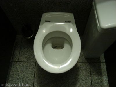 German toilets and their viewing platforms never fail to amuse me