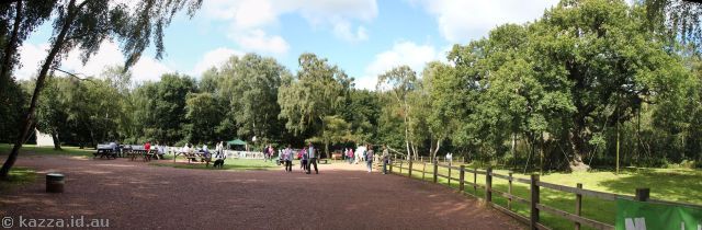 Sherwood Forest and Major Oak