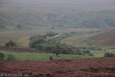 Train passing through the moors