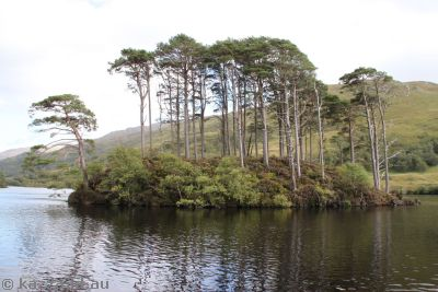 Island in Loch Eilt featured in Prisoner of Azkaban