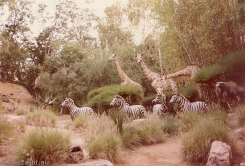 Scene of giraffes and zebras from Jungle Boat