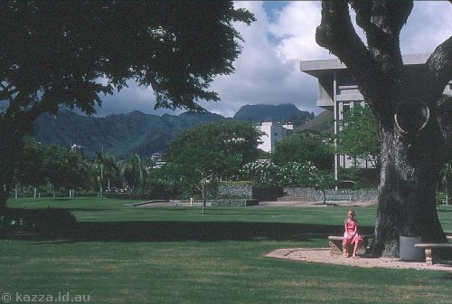 Lawns in Honolulu